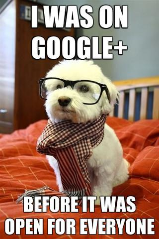 /galleries/dropbox/i-was-on-google-plus-before-hipster-dog-meme.thumbnail.jpg